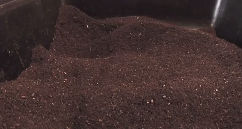 How to Build a Backyard Worm Farm