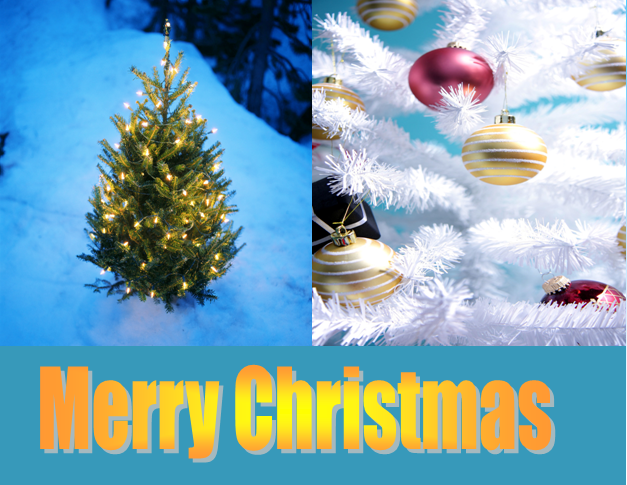 Merry Christmas on Word Matters!