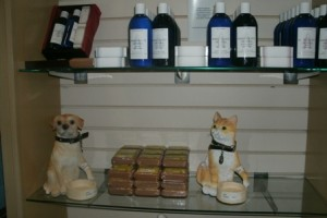 Cute dog and cat decorative in the gift shop