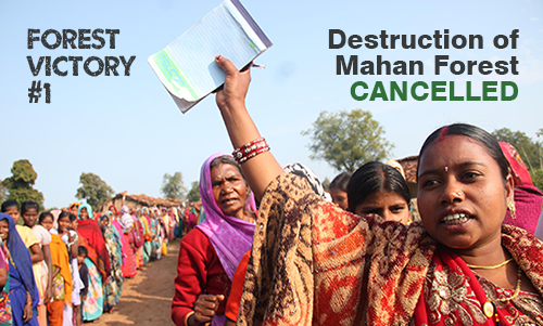 Mahan Forest in India Saved from Mining Company