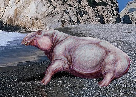 New Mammal Fossils Add to the Story of Extinction