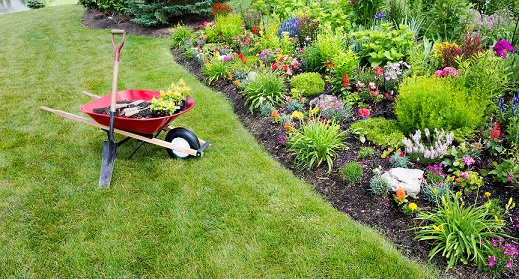 Four Steps to Prepare Your Garden for Spring Planting