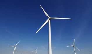 Wind Power Generation Threatening Climate and Animal Safety