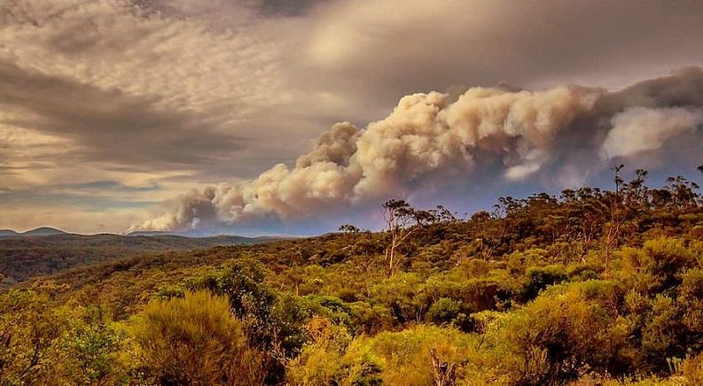 Australian Bushfires – Climate or Crime?