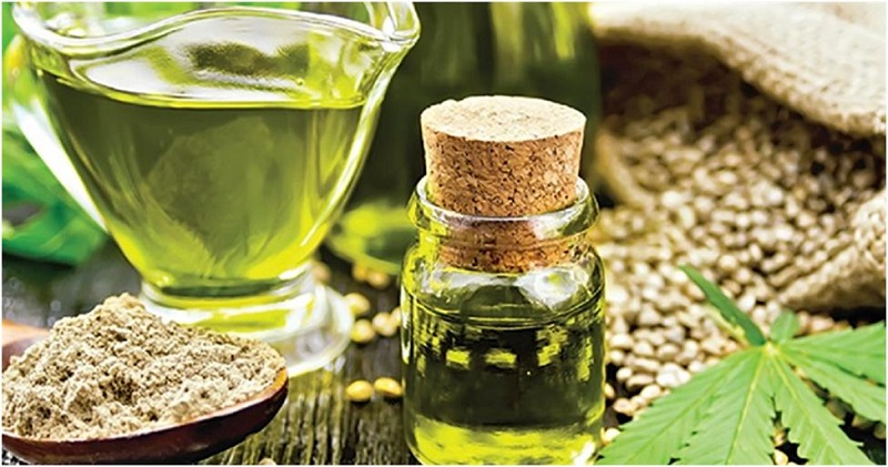 What You Need to Know about Hemp Oil for Pets