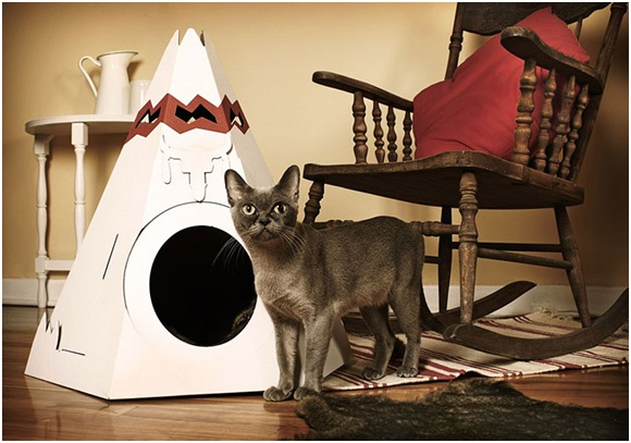 Guide to Buying Indoor Cat Condos